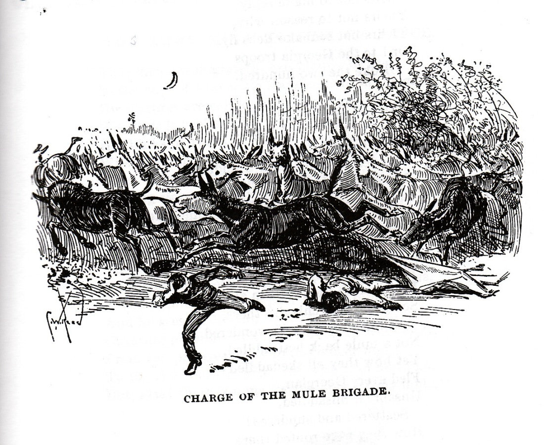 "The alleged ""Charge of the Mule Brigade"" at the night battle of Wauhatchie Station was the basis for Bierce's short story ""Jupiter Doke."""